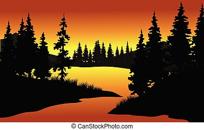 silhouette of spruce in river