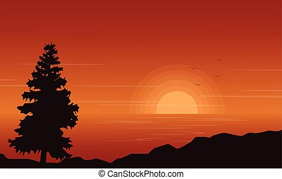 Silhouette of spruce on lake at sunset