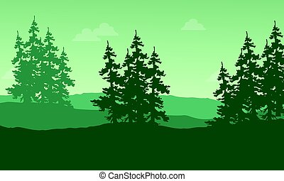 Silhouette of spruce on the hill