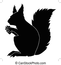 squirrel - silhouette of squirrel