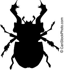silhouette of stag beetle
