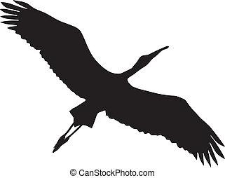 stork