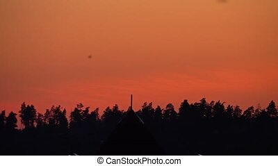 Silhouette of summer forest trees against orange sunset sky. 4K pan shot