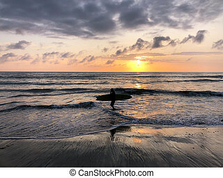 Silhouette of surfer on the Beach at Sunset