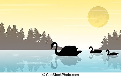 Silhouette of swan on lake scenery