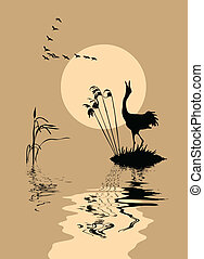 silhouette of the birds on lake