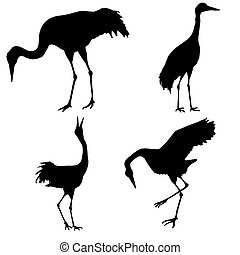 silhouette of the cranes isolated on white background