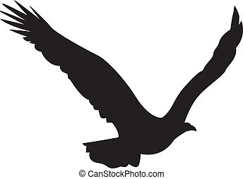 Silhouette of the eagle in flight with wings spread