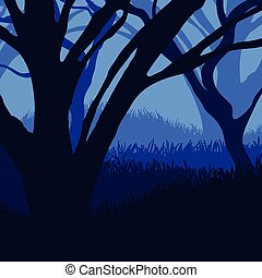 Silhouette of the forest