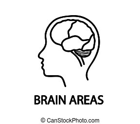 Silhouette of the head and brain on a white background. Brain areas. Vector