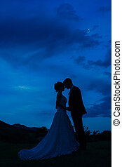 Silhouette of the newlyweds against the sky at sunset. Wedding i