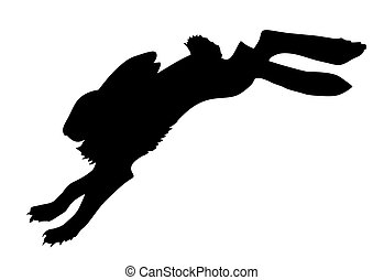 silhouette of the rabbit on white background