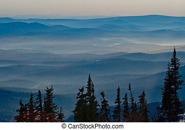 Silhouette of the trees on the mountain background