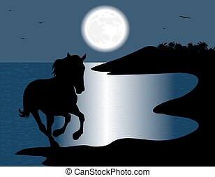 wild horse - silhouette of the wild horse in the sea in the...