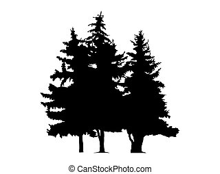 Silhouette of three pine trees.