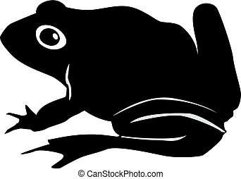 toad - silhouette of toad