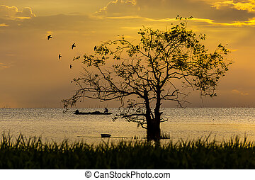 Silhouette of tree and fishermen in the lake with sunlight.