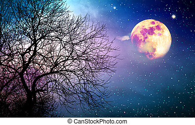 Silhouette of tree and full moon on colorful night sky.