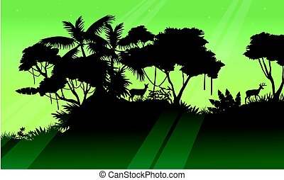 Silhouette of tree on the jungle scenery