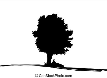 Silhouette of tree - Silhouette of oak tree in autumn