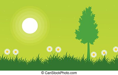 Silhouette of tree with flower at spring landscape