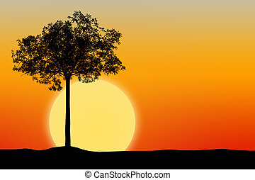 Silhouette of tree with sunset background
