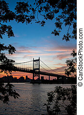 Silhouette of Triborough bridge over the river and buildings behind the branches with colorful sunset sky, New York