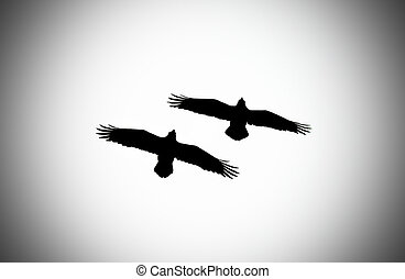 Silhouette of two flying ravens with added vignette