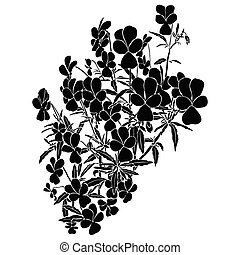 Silhouette of viola tricolor. Black illustration on white ...