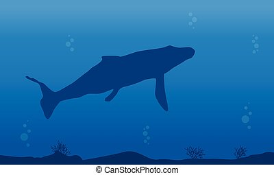 Silhouette of whale on blue sea