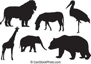 Silhouette of wild animals - Detail black silhouette of wild...