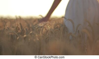 Silhouette of woman in wheat field in sunset light
