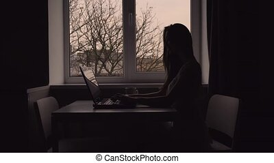Silhouette of Woman Works with Laptop