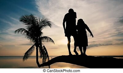 Silhouette of young happy father with his daughter walking...