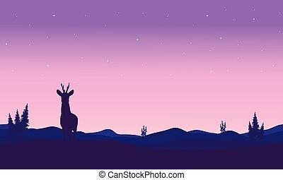 Silhouette of zebra in hills