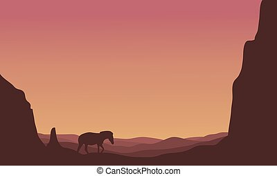 Silhouette of zebra in hills scenery
