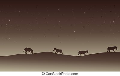 Silhouette of zebra in hills scenery at nigh