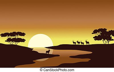 Silhouette of zebra in riverbank
