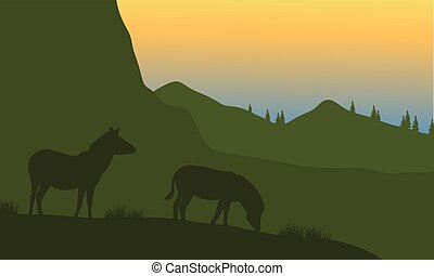 Silhouette of zebra on the mountain
