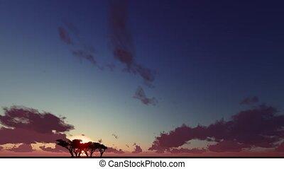 Silhouette, one tree dusk landscape - Silhouette, one tree...