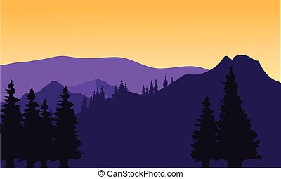 Silhouette or fir trees on the mountain