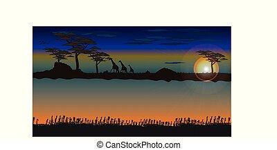 silhouette, paysage