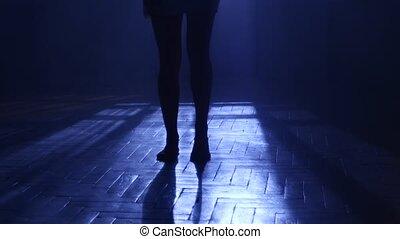 silhouette, penetrates, clair lune, danses, par, fenêtre., gracieux, girl