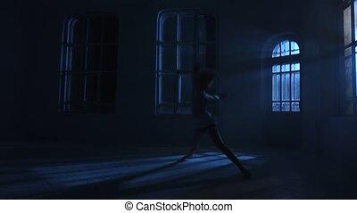 silhouette, performance, lune, lumière, girl., danses, nuit, gracieux