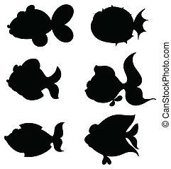 silhouette, pesci