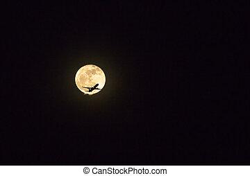 Silhouette plane flying against full moon in night sky.