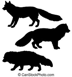 silhouette polar fox, badger, vixens isolated on white...