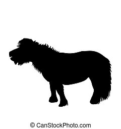 silhouette, poney, noir