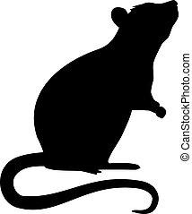 silhouette, ratte, stehende