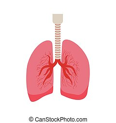 silhouette respiratory system with lungs vector illustration